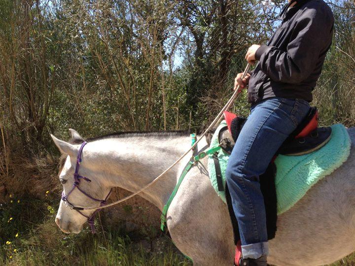 De jorge san escuela equitación