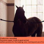 Buenas prácticas para la tenencia, cuidados, entrenamiento y uso de caballos. Parte 1