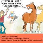buenas practicas cuidado caballos traduccion